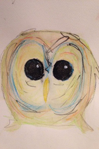 picture for IB Art - owl