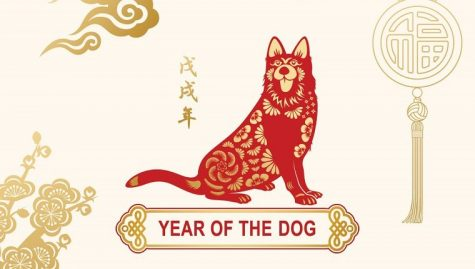 Chinese Club to Celebrate Year of the Dog