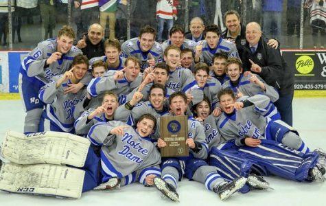 Boys Hockey Team Heading to State