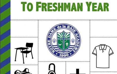 The Declassified Guide to Freshman Year