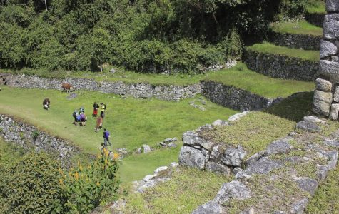 Dorys Will Lead Trip to Machu Picchu in June 2021, Info Available