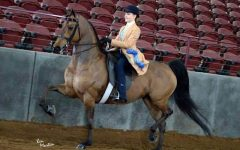 Freshman Equestrian Competes at Nationals in Oklahoma City