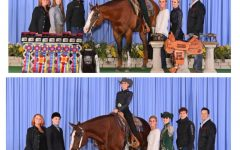 Goffard Sisters--Catherine & Emma--Earn World Titles at World Horse Show in Oklahoma